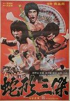 Potomci Bruce Lee