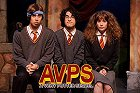 Very Potter Sequel, A