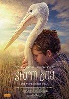 Chlapec a pelikán