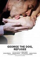 Jiří pes uprchlík