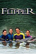 Delfín Flip